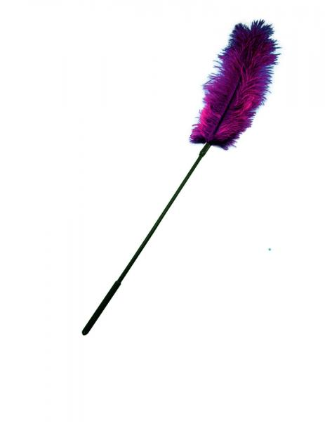 Ostrich feather ticklers - burgundy Sex Toy Product