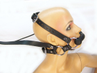Pony Bridle Harness With Reins