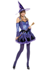 Be Wicked Gypsy Witch Medium/Large