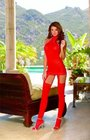 Dreamgirl Sheer Garter Dress Red One Size