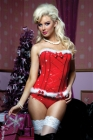 Jingle All The Way Bustier & Panty Small