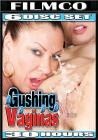 30hr Gushing Vaginas {6 Discs} Sex Toy Product
