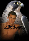 Gay Falcon A 25 Pc Mix