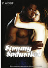 Steamy Seduction Playgirl Sex Toy Product