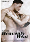 Heavenly Heat Playgirl Sex Toy Product