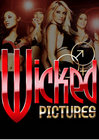 Wicked 2008 Avn Picks 20 Pc Mix Sex Toy Product