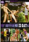 My Boyfriend Is Gay 04
