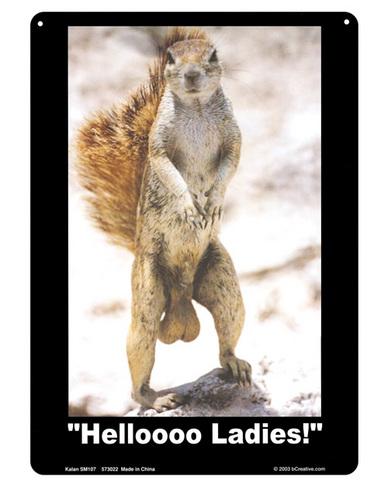 Helloooo ladies tin sign
