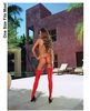 Sheer thigh high w/back seam red o/s