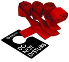 Sex &amp; Mischief Flirt do not disturb kit