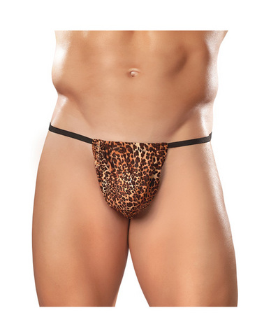 Male power mens posing strapthong animal o/s