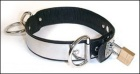 Locking Stainless Steel/Leather Locking Collar, XS