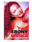 Ebony erotica book - a lovers guide to sexual positions