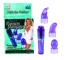 Dr. z passion massager mini w/attachments