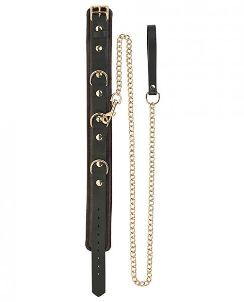 Spartacus Collar & Leash Brown Leather Gold Accent Hardware