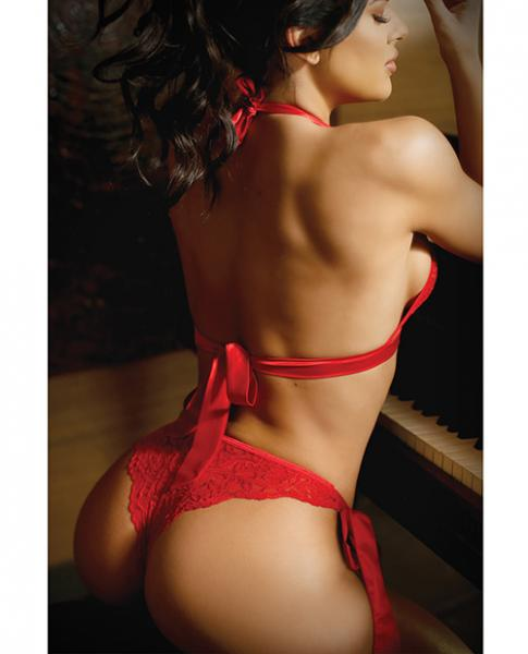 Vixen Cutout Lace Bra & Side Tie Panty Red L/XL