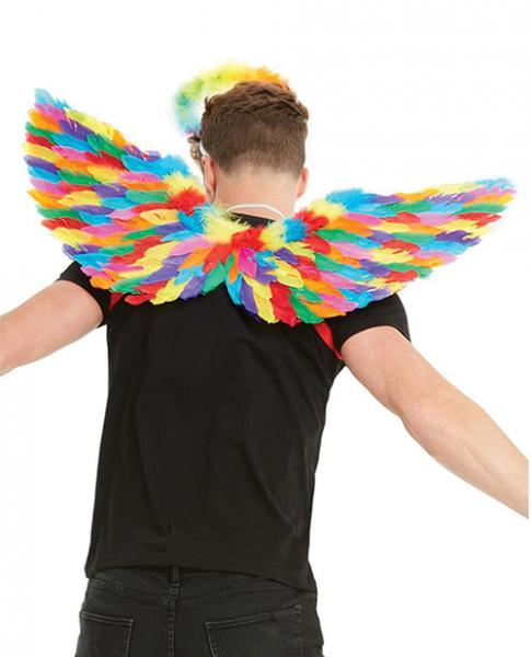 Rainbow Small Feather Wings