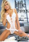 Little Things Sex Toy Product