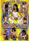 Trans Gigolo Sex Toy Product