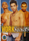 Work Secrets Sex Toy Product