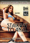 16hr Stairway To Anal Sex Toy Product