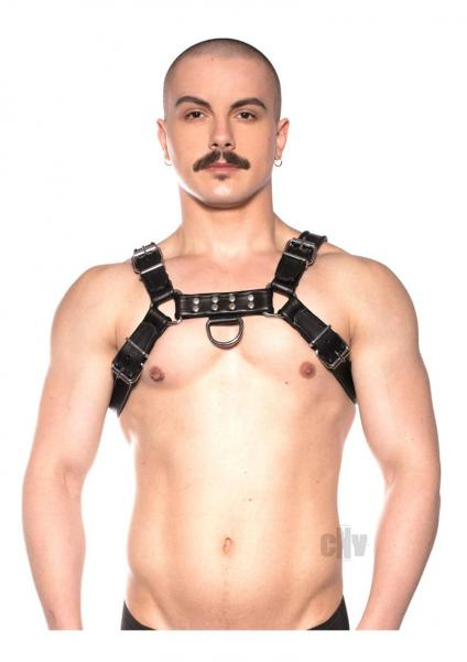Prowler Red Bull Harness Blk Xxlg