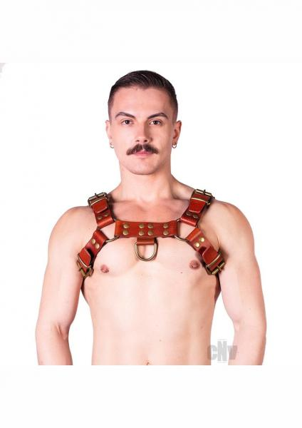 Prowler Red Butch Harness Brn/brs Md