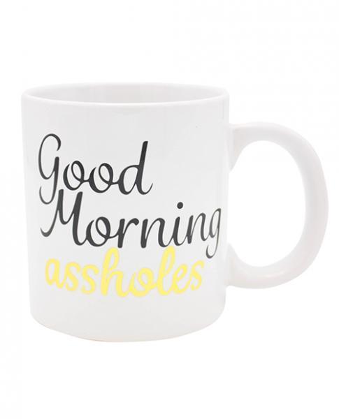 Attitude Mug Good Morning Asshole Holds  22oz
