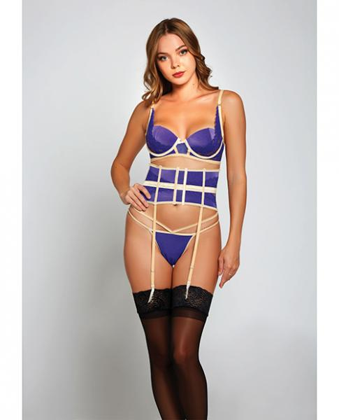 Galloon Lace & Microfiber Bra, Waist Cincher & G-string Purple/beige Lg