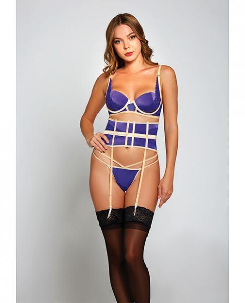 Galloon Lace & Microfiber Bra, Waist Cincher & G-string Purple/beige Md