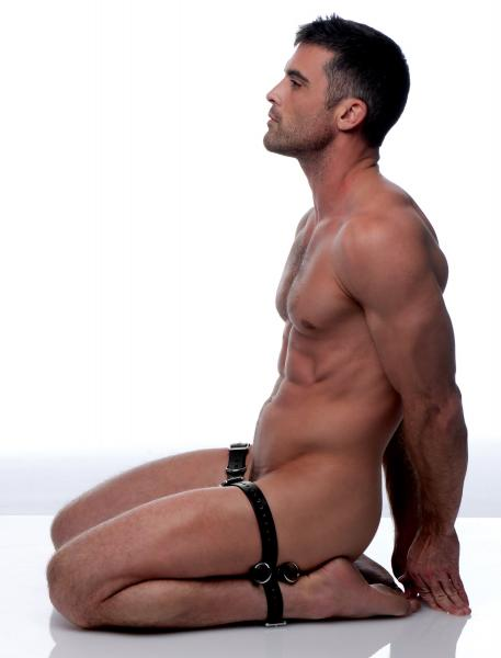 Man restrained sex